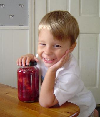 lacto fermented cranberry relish