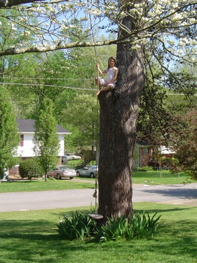 girl climbing rope up a tree